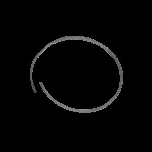 4720865 Piston Ring
